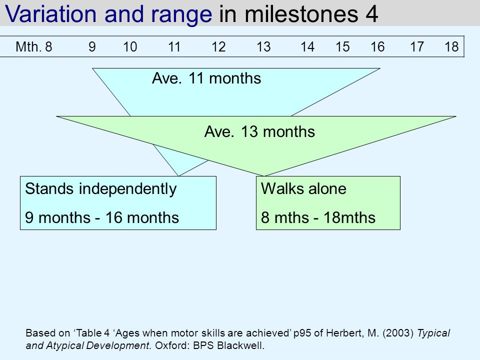 Variation and range in milestones 4