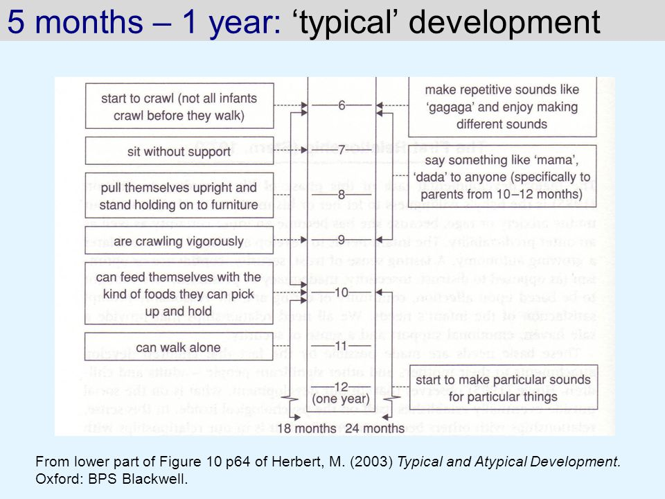 5 months – 1 year: 'typical' development