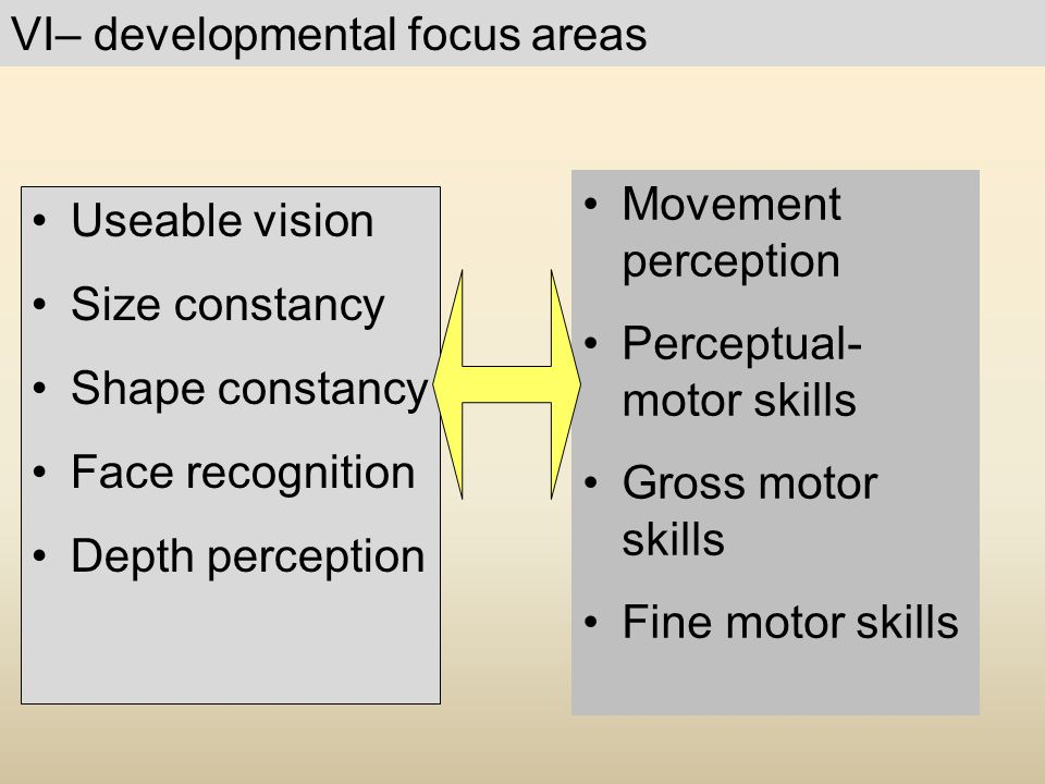 VI– developmental focus areas