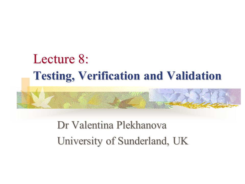 Lecture 8: Testing, Verification and Validation