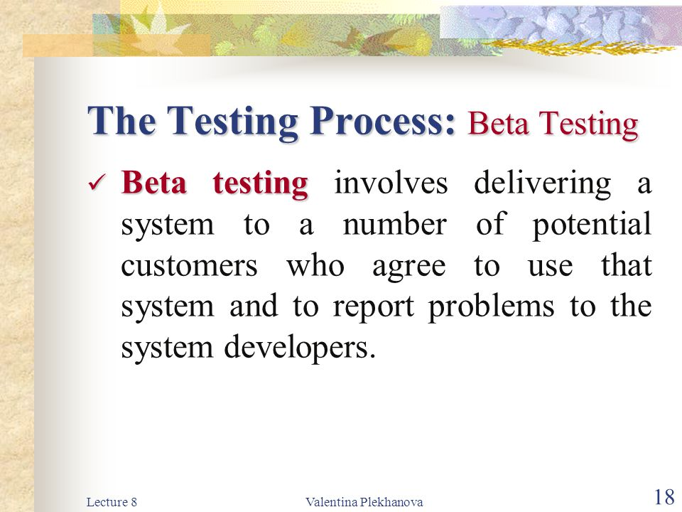 The Testing Process: Beta Testing