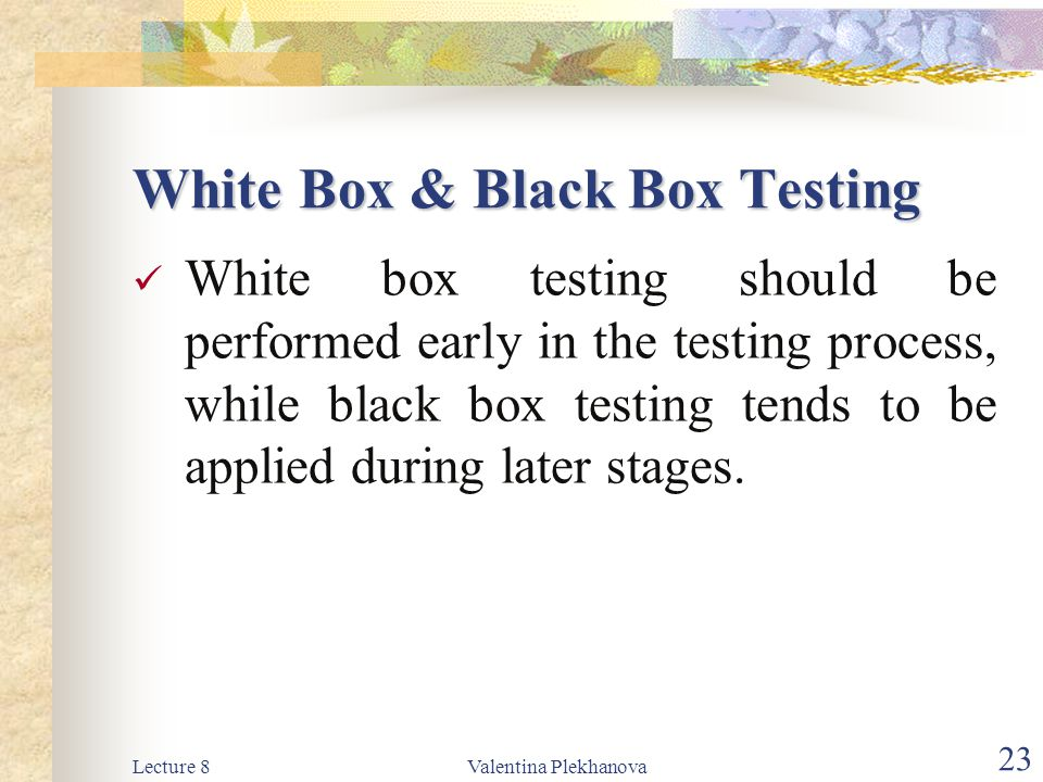 White Box & Black Box Testing