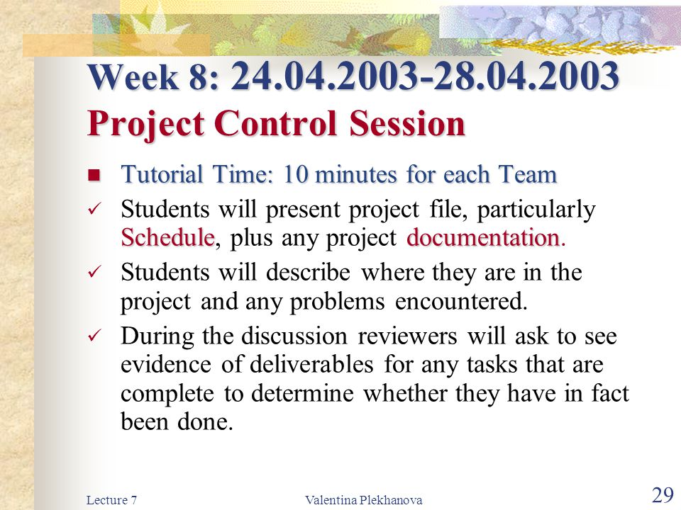 Week 8: 24.04.2003-28.04.2003 Project Control Session