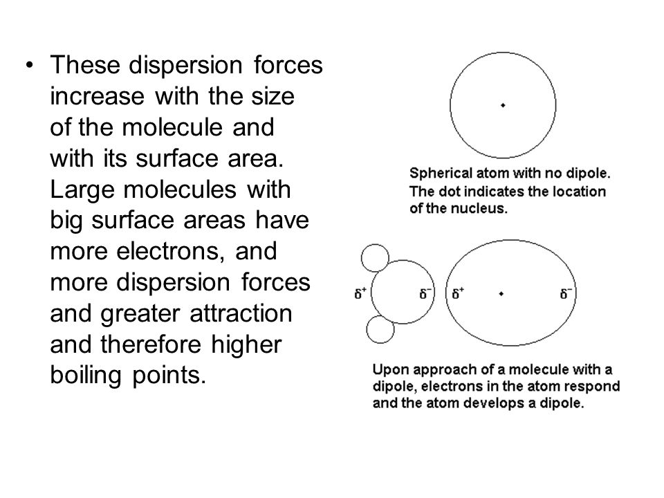 These dispersion forces increase with the size of the molecule and with its surface area.
