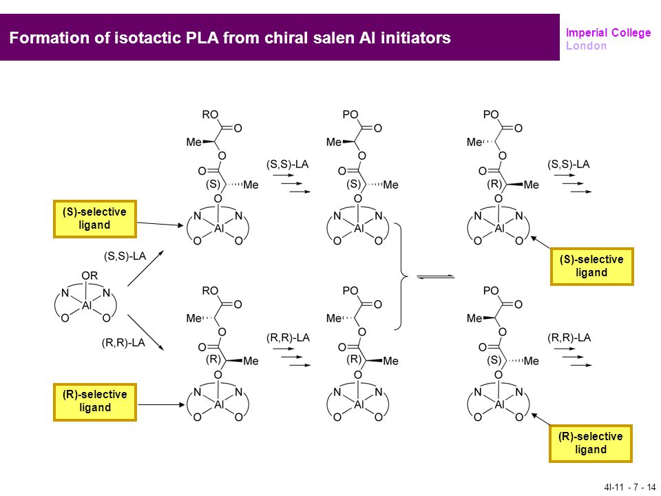 Formation of isotactic PLA from chiral salen Al initiators