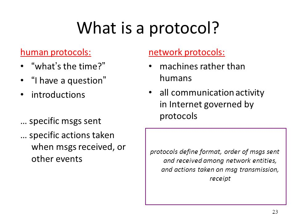 What is a protocol human protocols: what's the time