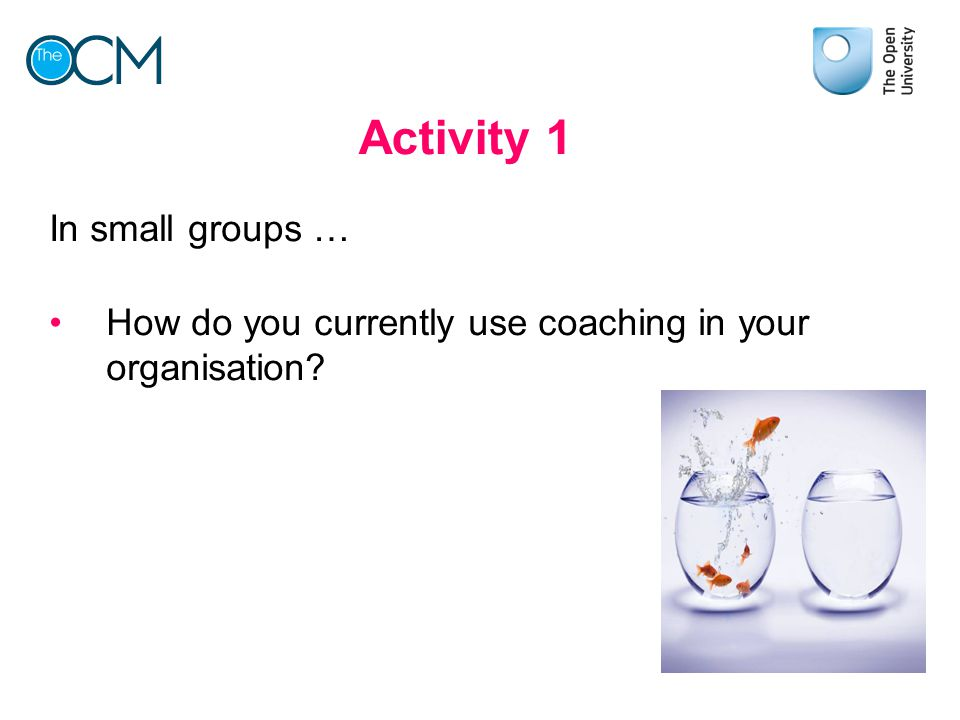 Activity 1 In small groups …