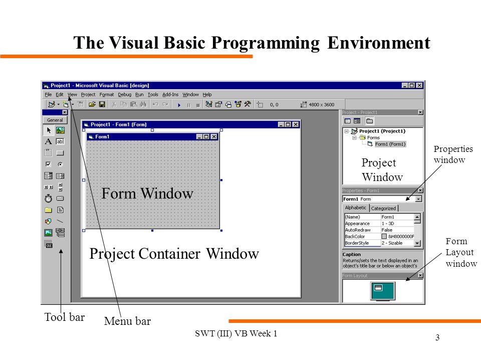 The Visual Basic Programming Environment