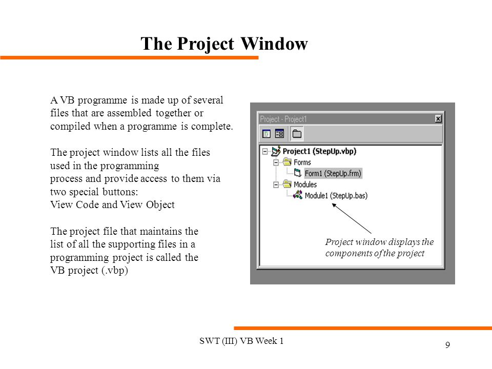 The Project Window A VB programme is made up of several