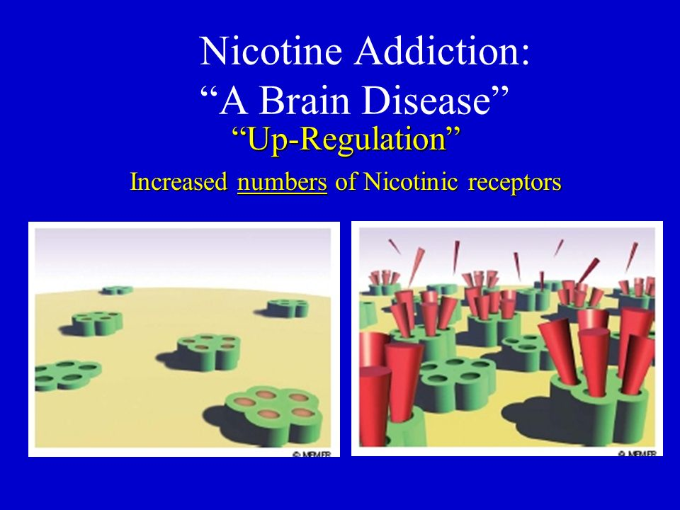 Nicotine Addiction: A Brain Disease