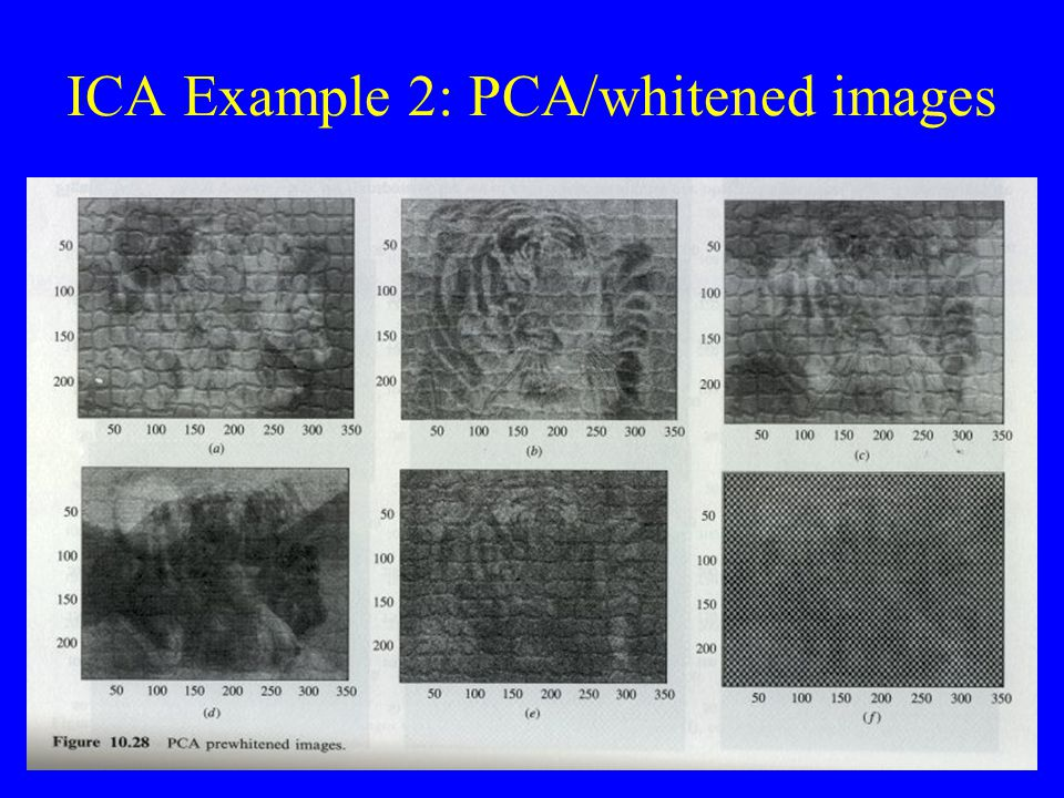 ICA Example 2: PCA/whitened images