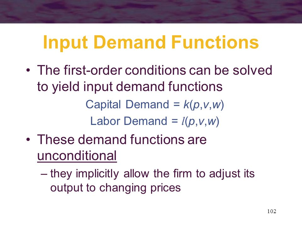 Input Demand Functions