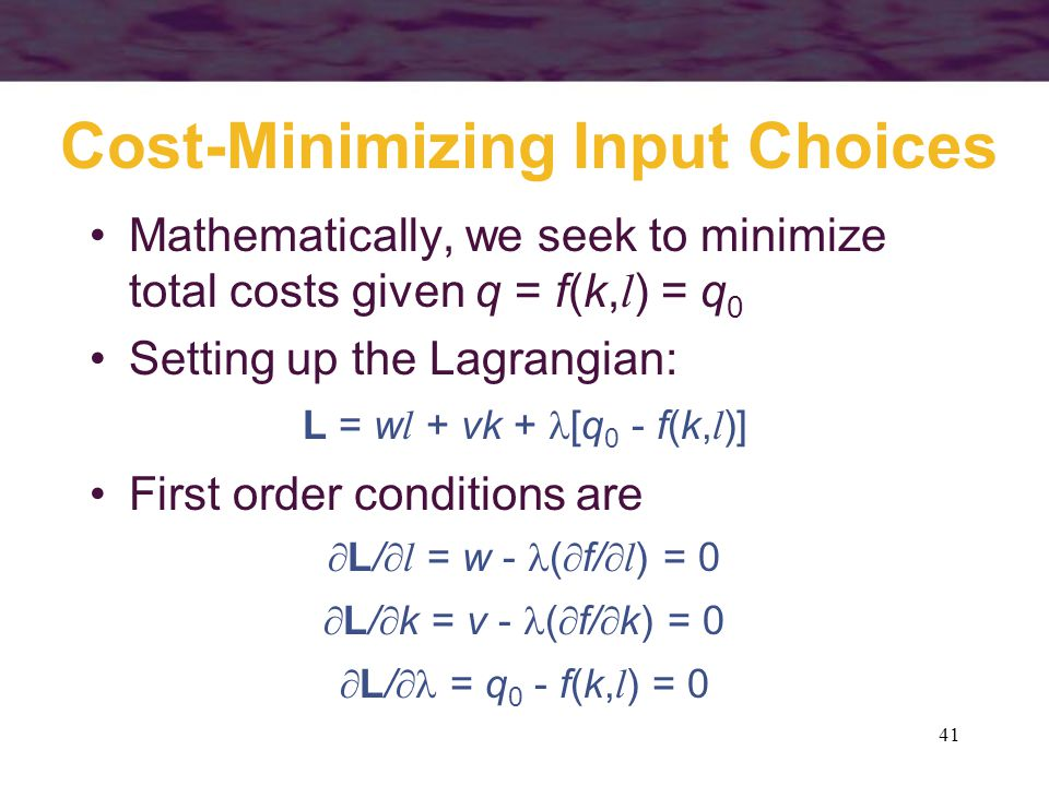 Cost-Minimizing Input Choices