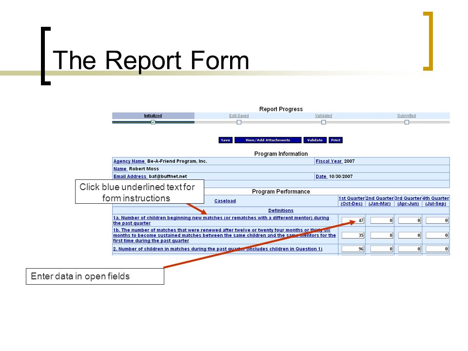 The Report Form Click blue underlined text for form instructions