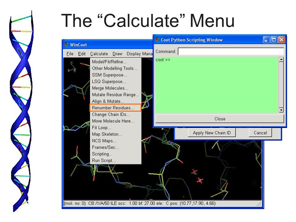 The Calculate Menu