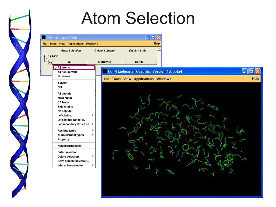 Atom Selection