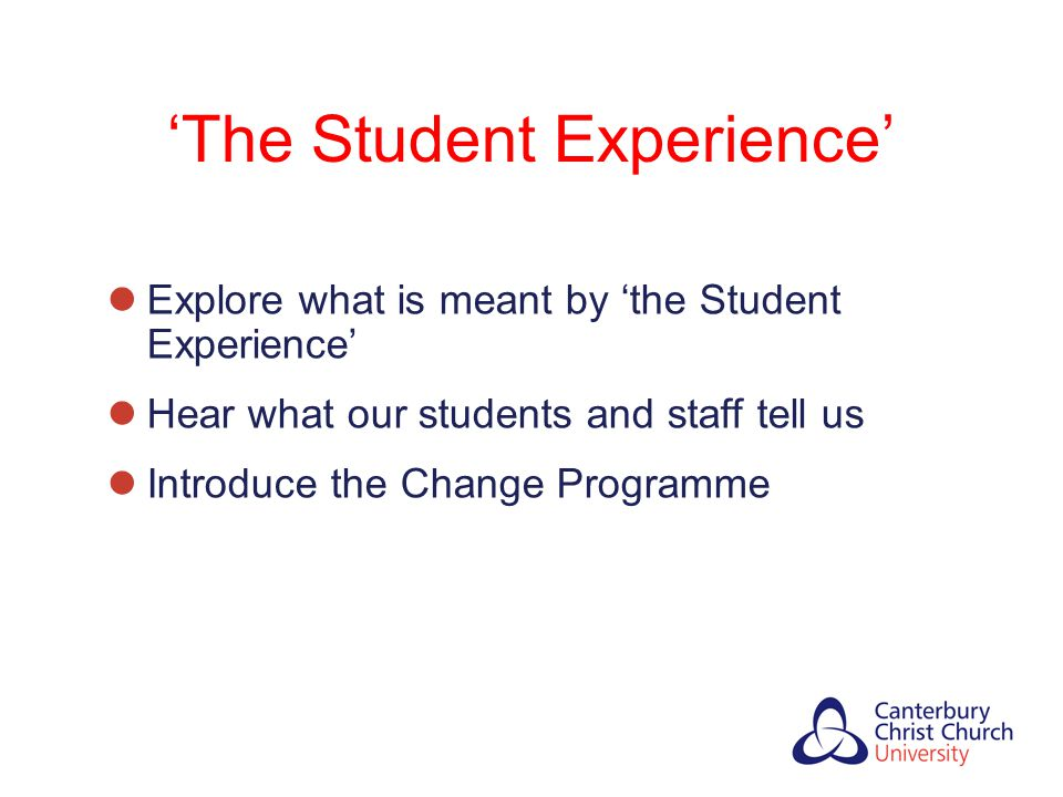 'The Student Experience'