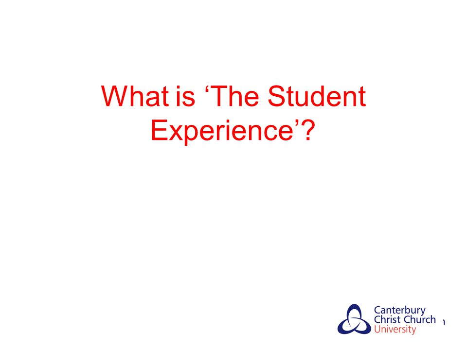 What is 'The Student Experience'