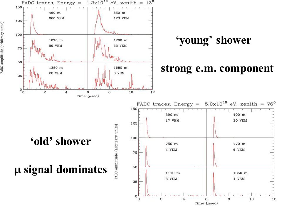 'young' shower strong e.m. component 'old' shower m signal dominates