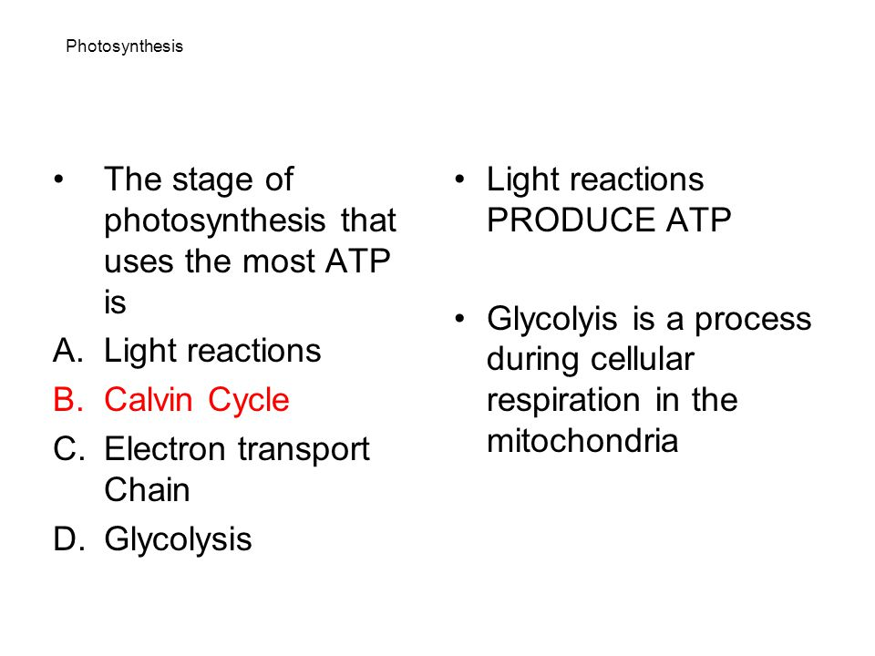 The stage of photosynthesis that uses the most ATP is