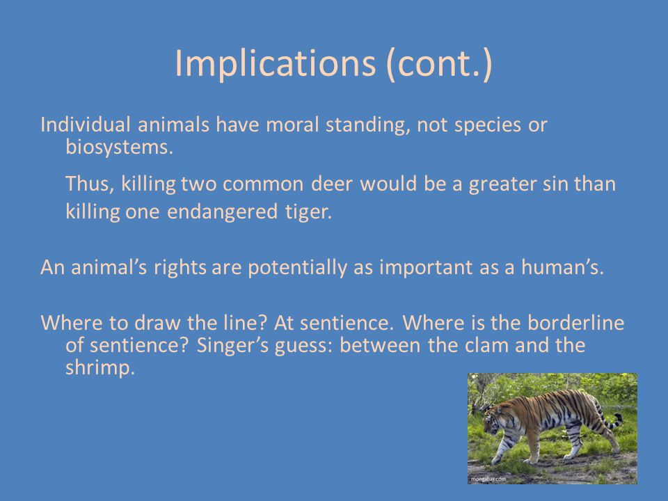 Implications (cont.) Individual animals have moral standing, not species or biosystems. Thus, killing two common deer would be a greater sin than.