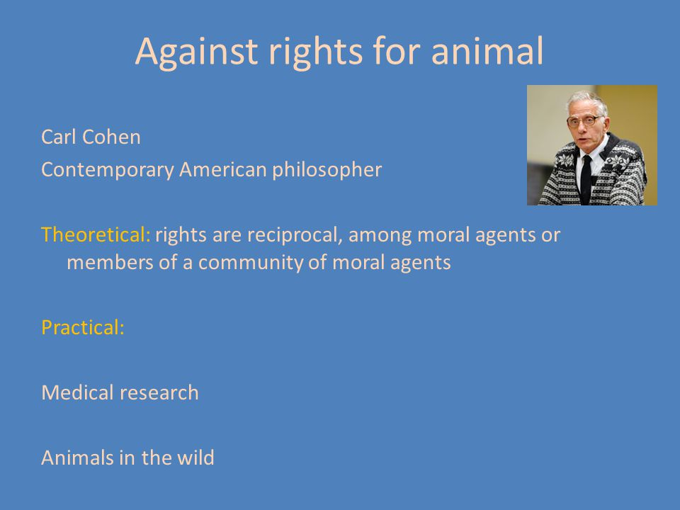 Against rights for animal