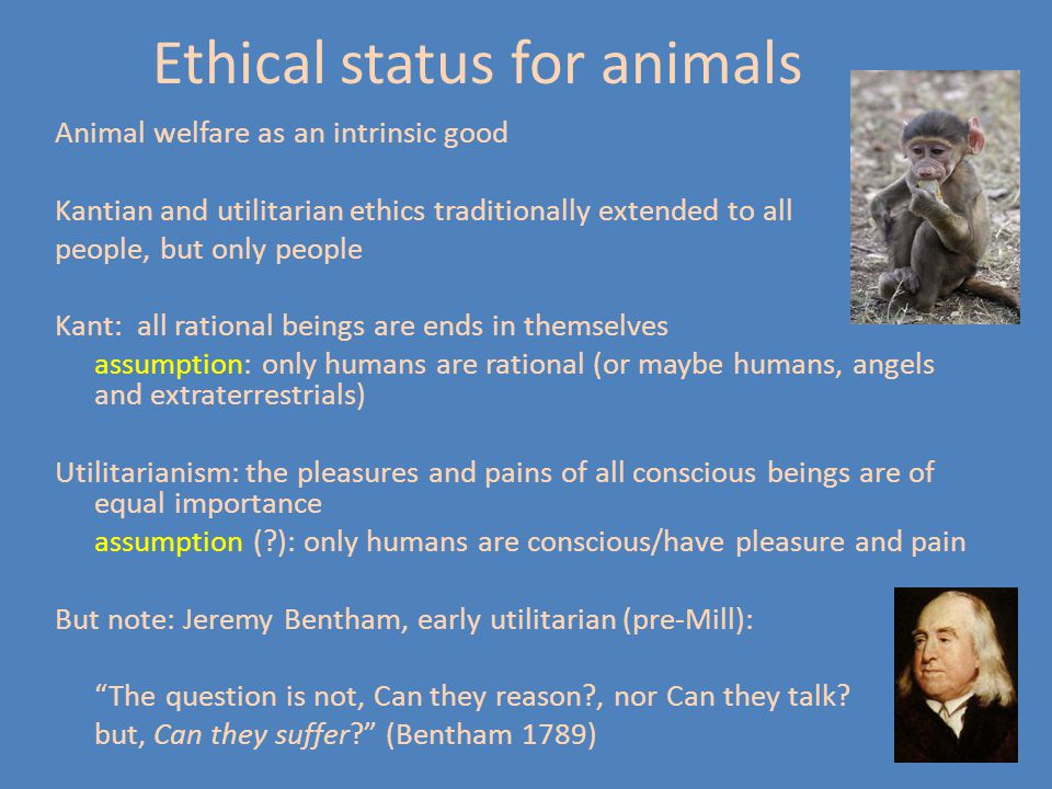 Ethical status for animals
