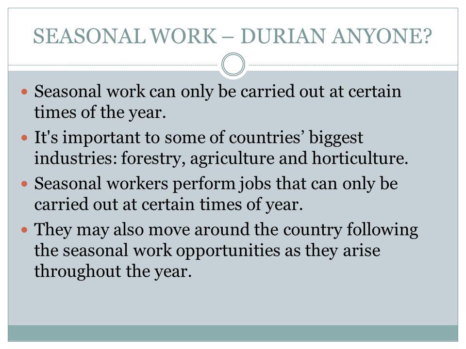 SEASONAL WORK – DURIAN ANYONE