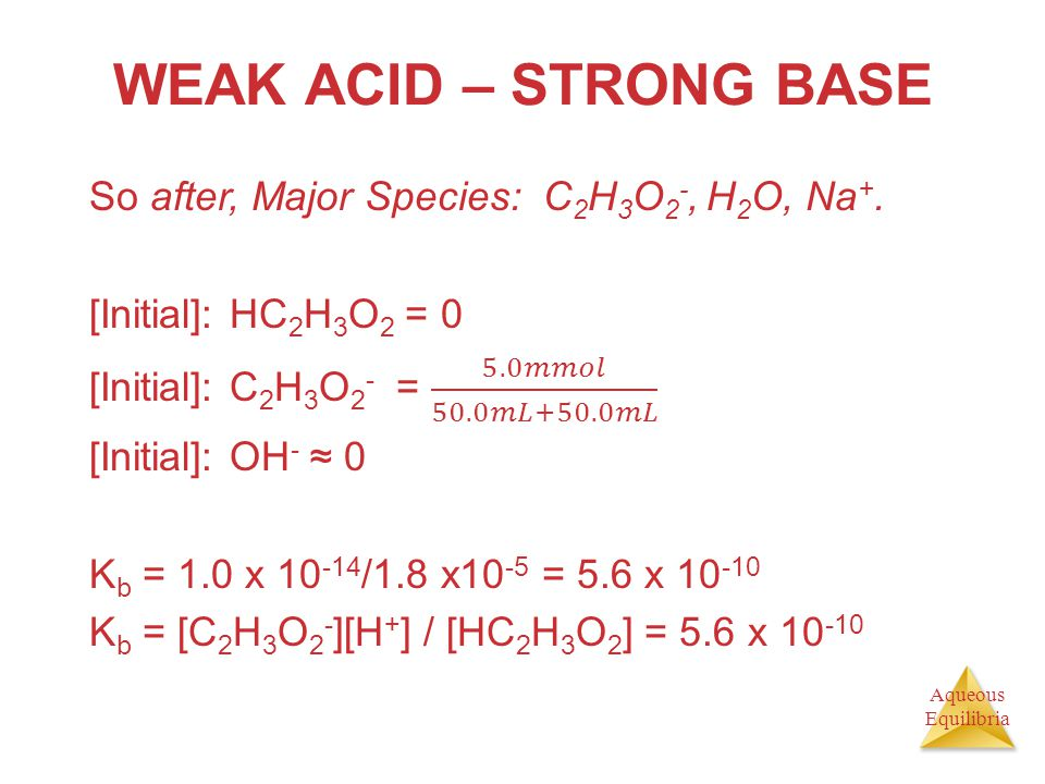 WEAK ACID – STRONG BASE So after, Major Species: C2H3O2-, H2O, Na+.