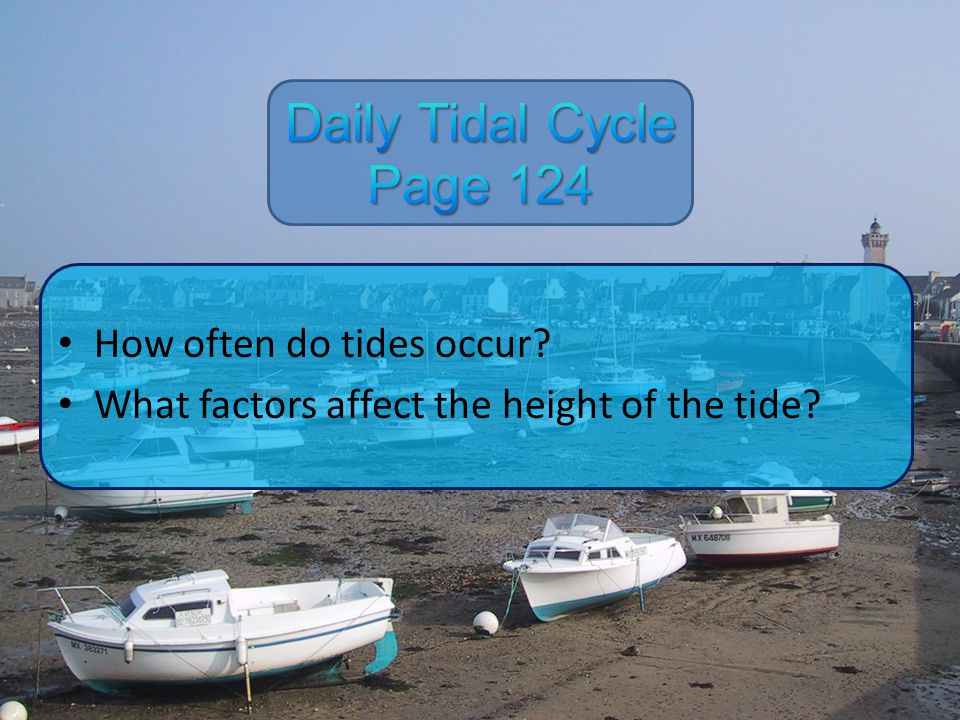 Daily Tidal Cycle Page 124 How often do tides occur