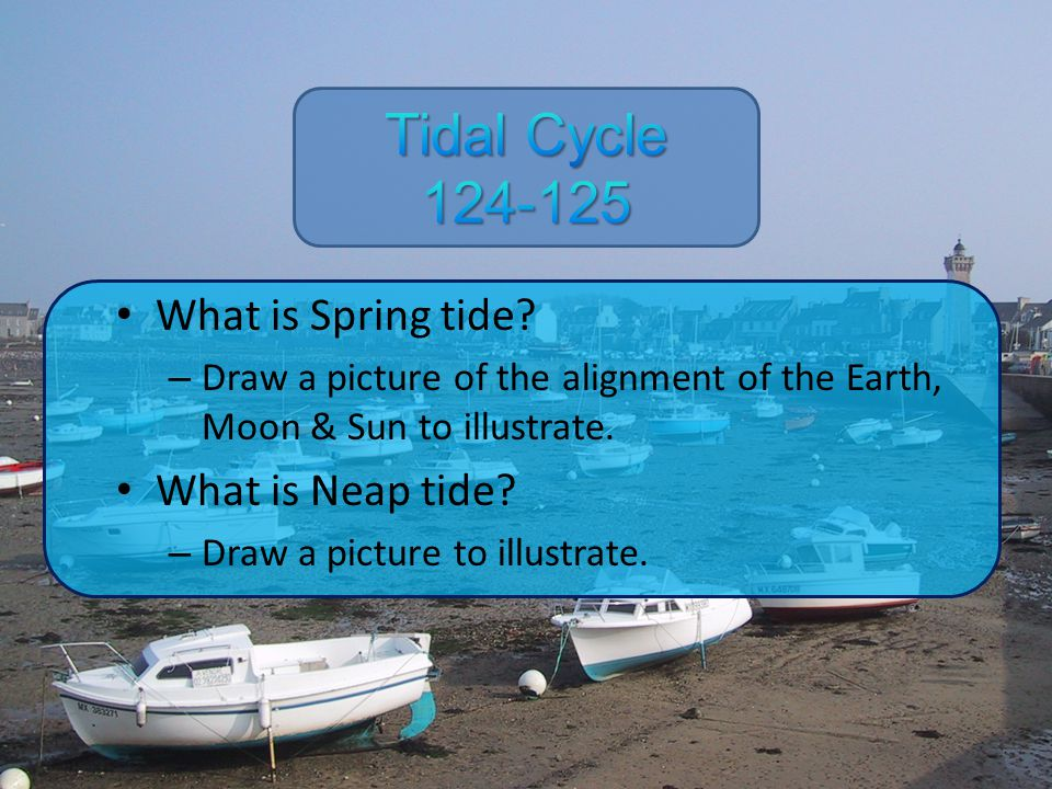 Tidal Cycle 124-125 What is Spring tide What is Neap tide