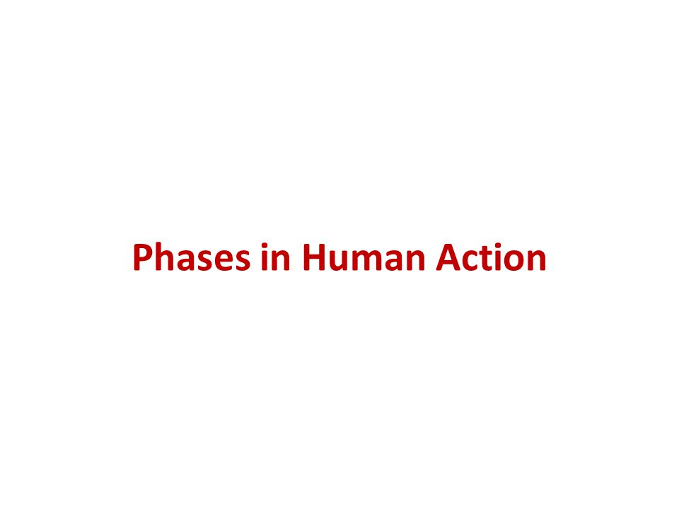 Phases in Human Action