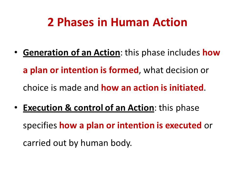 2 Phases in Human Action
