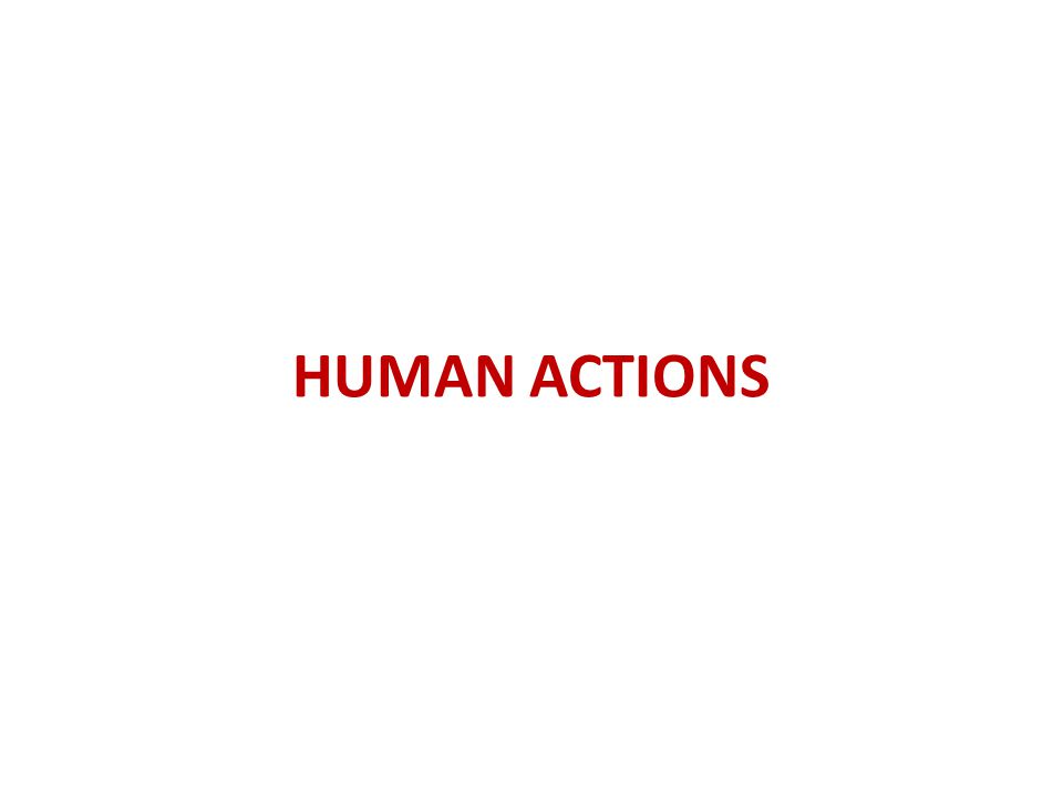 HUMAN ACTIONS