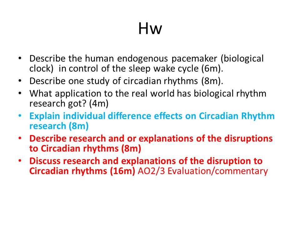 Hw Describe the human endogenous pacemaker (biological clock) in control of the sleep wake cycle (6m).