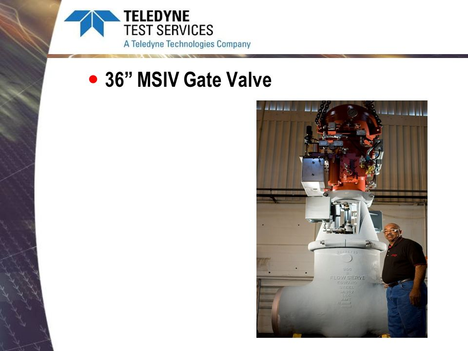 36 MSIV Gate Valve