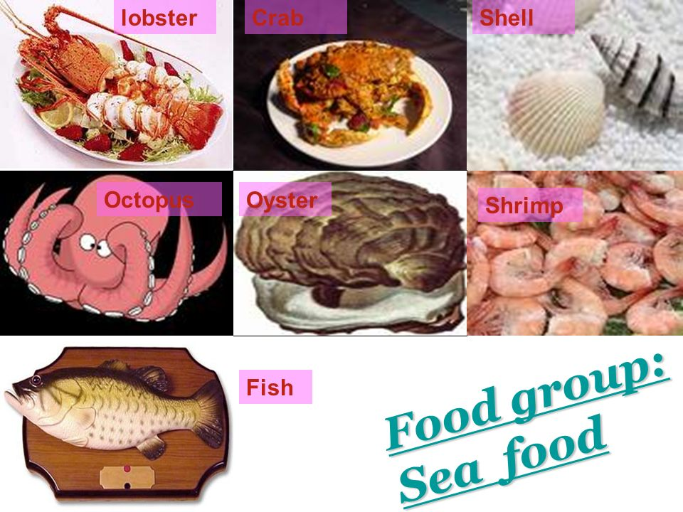 lobster Crab Shell Octopus Oyster Shrimp Food group: Sea food Fish