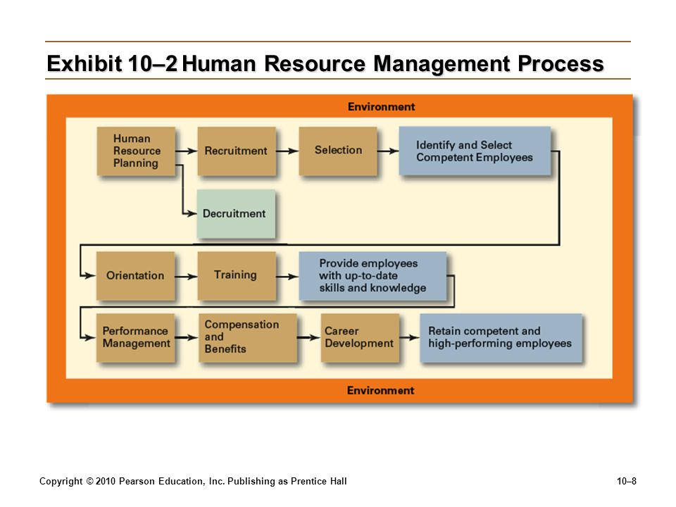 Exhibit 10–2 Human Resource Management Process