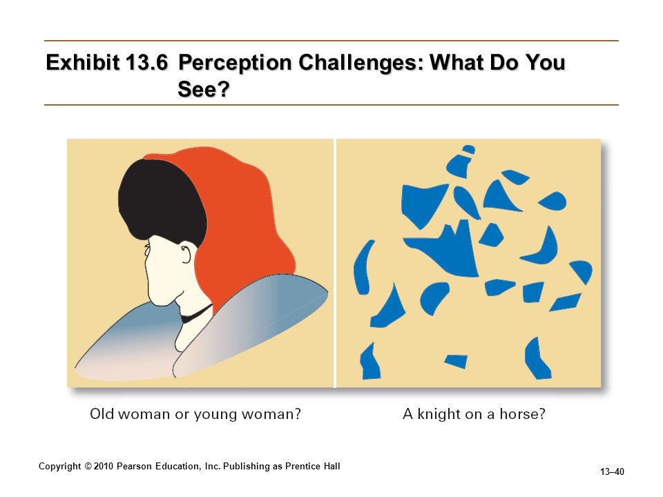 Exhibit 13.6 Perception Challenges: What Do You See