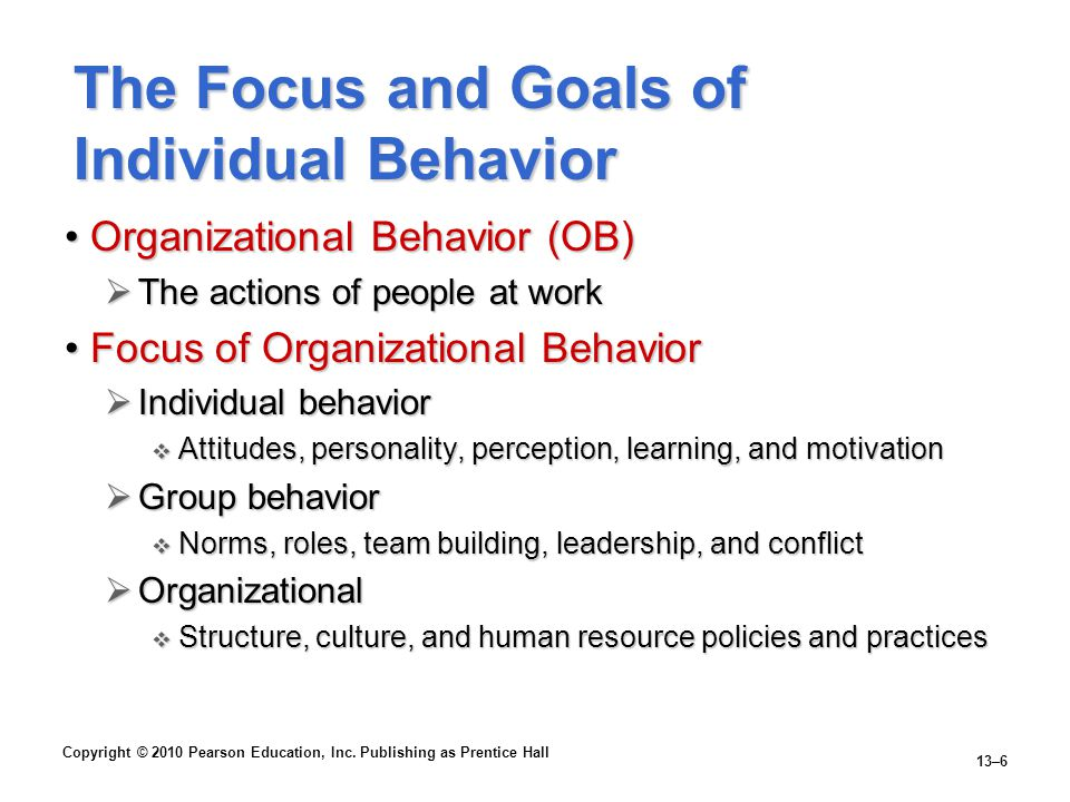 The Focus and Goals of Individual Behavior