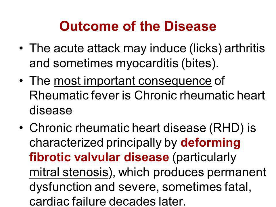 Outcome of the Disease The acute attack may induce (licks) arthritis and sometimes myocarditis (bites).