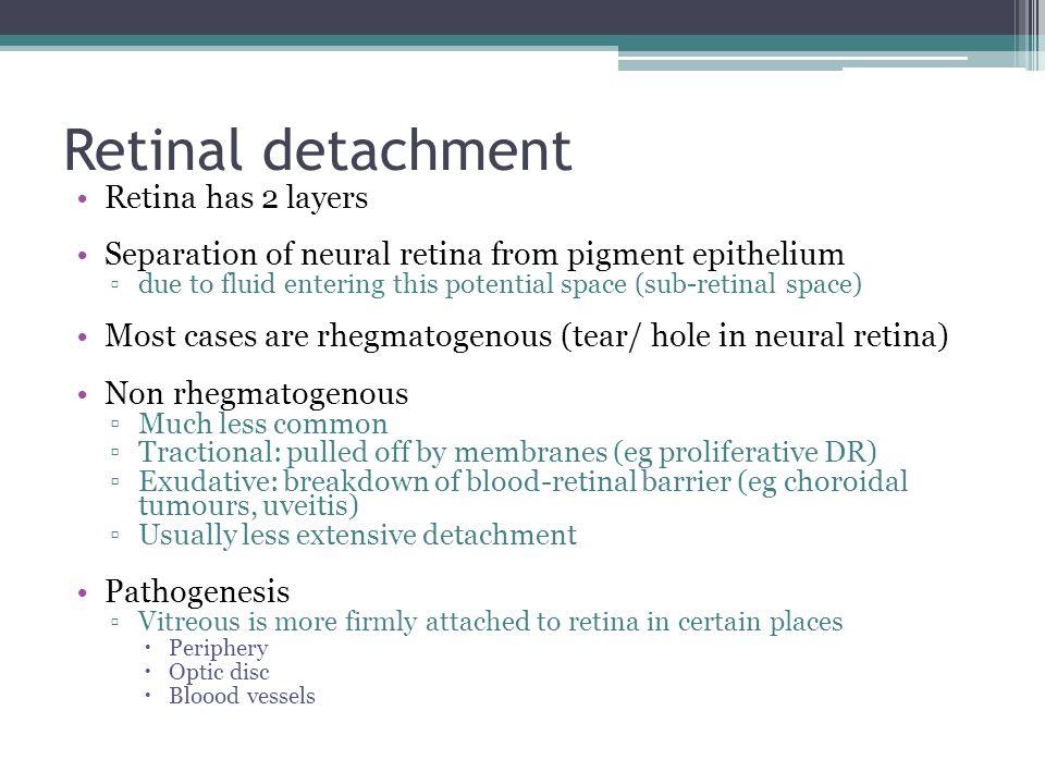 Retinal detachment Retina has 2 layers