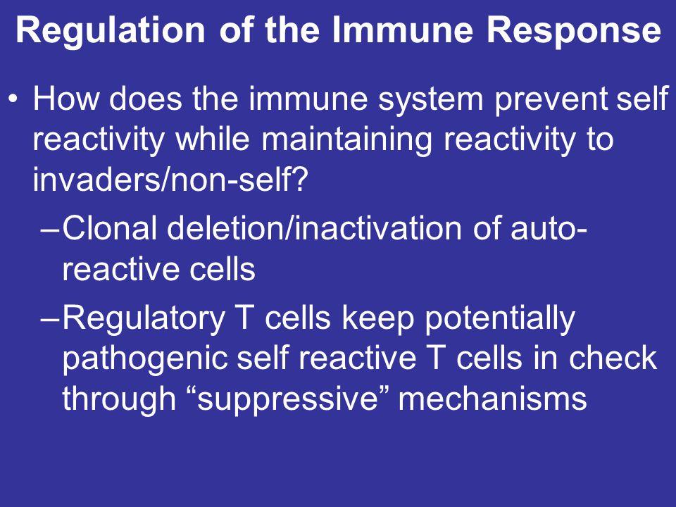 Regulation of the Immune Response