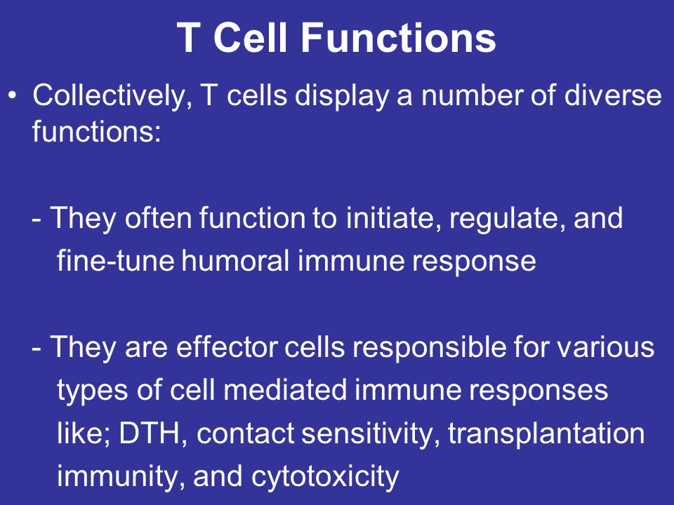 T Cell Functions Collectively, T cells display a number of diverse functions: - They often function to initiate, regulate, and.