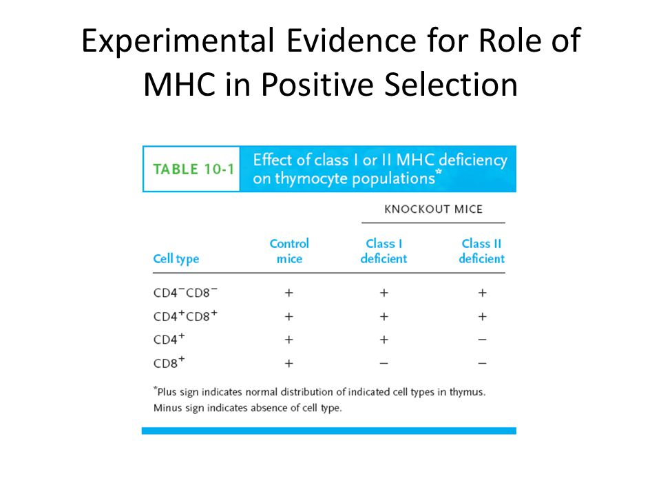 Experimental Evidence for Role of MHC in Positive Selection