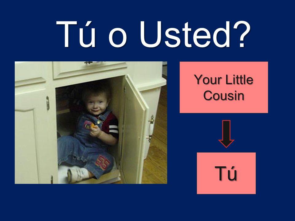 Tú o Usted Your Little Cousin Tú