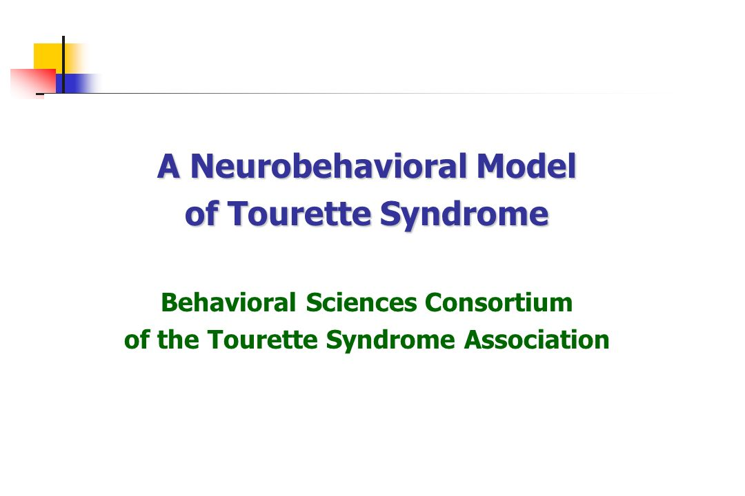 A Neurobehavioral Model of Tourette Syndrome