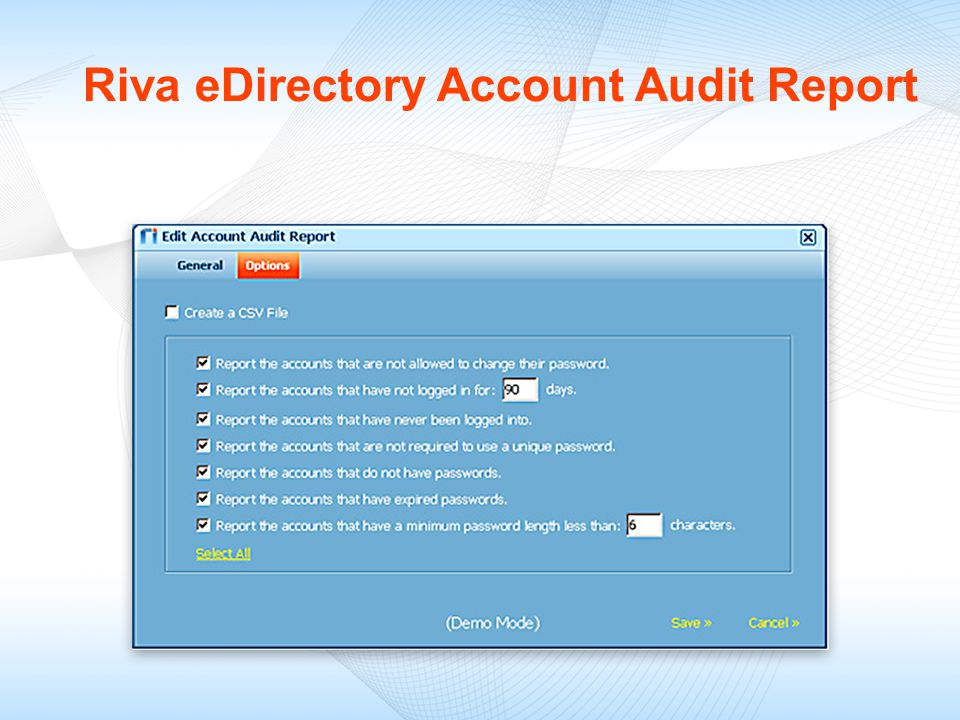 Riva eDirectory Account Audit Report