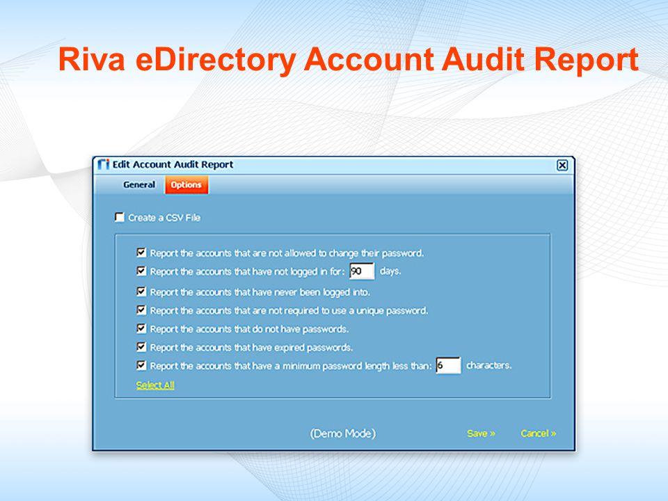 Riva eDirectory Account Audit Report