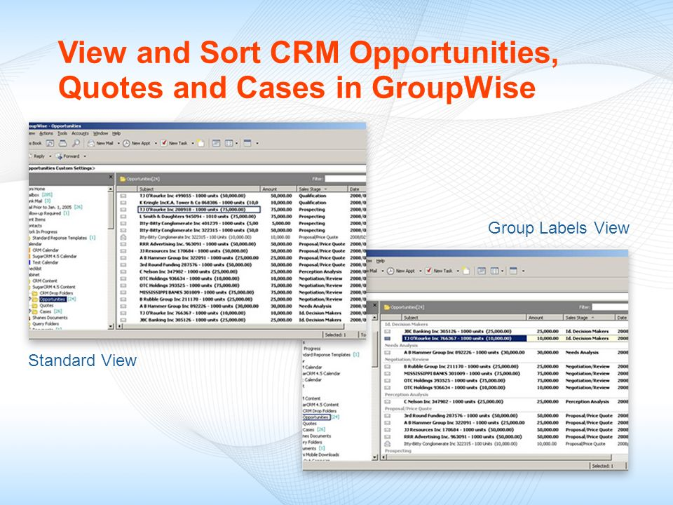 View and Sort CRM Opportunities, Quotes and Cases in GroupWise
